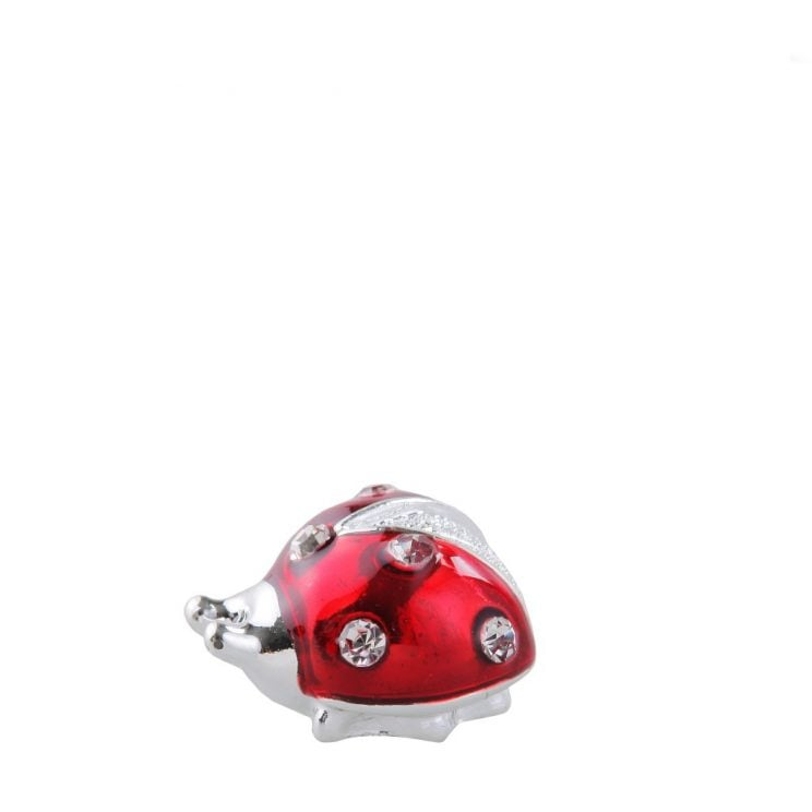 Magnes Ladybug
