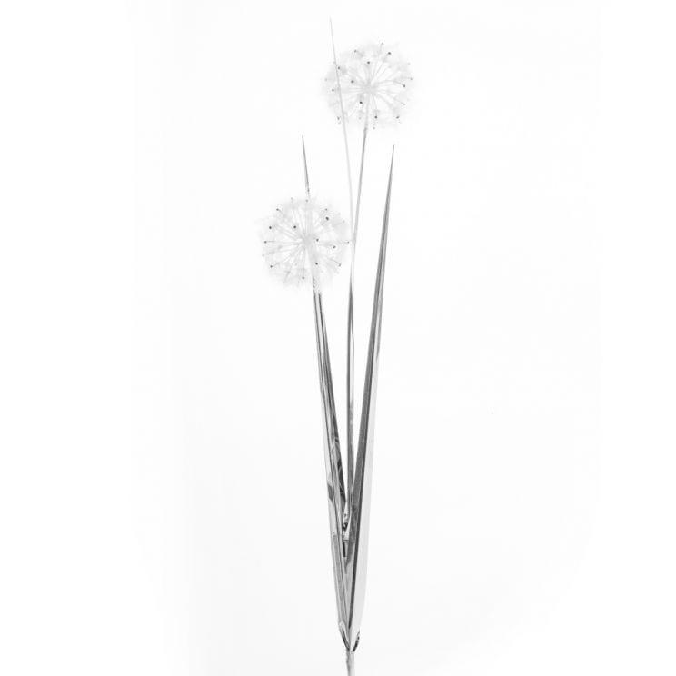 Kwiat Dandelion