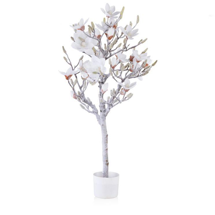 Stroik Magnolia Snow
