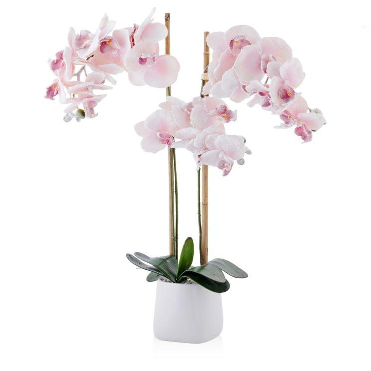 Stroik Frozen Orchid