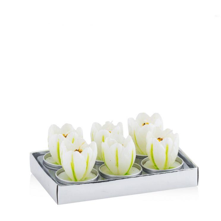 Komplet Podgrzewaczy Zapachowych Tulip