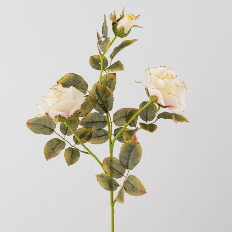 Kwiat Rossam