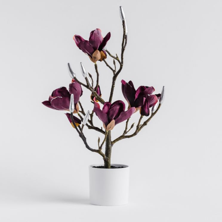 Stroik Magnotree Small