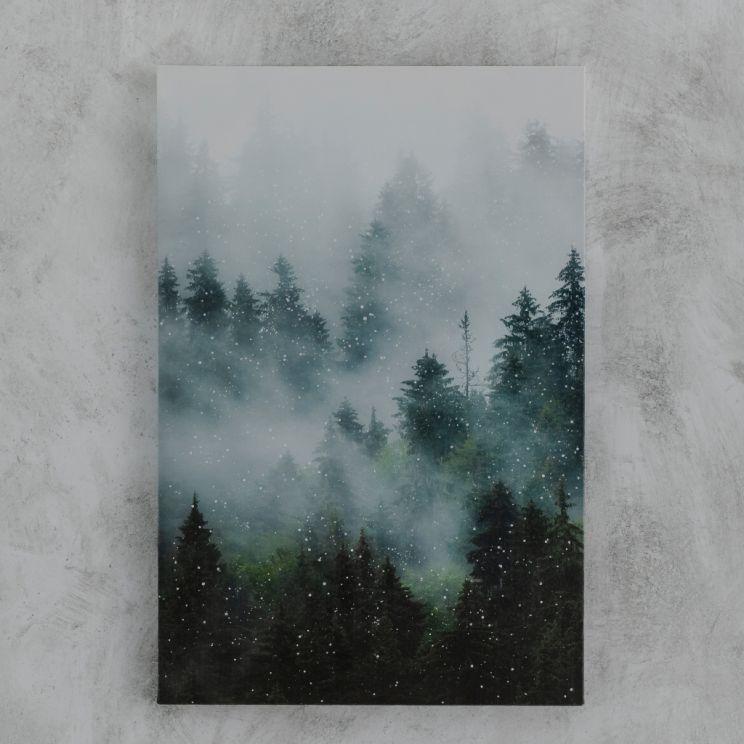 Obraz Forresti